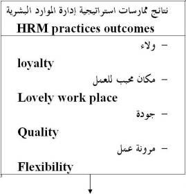 نموذج ديفيد جست عن إطار واستراتيجية إدارة الموارد البشرية